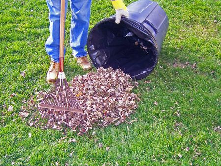 man putting raked autumn leaves in trashcan