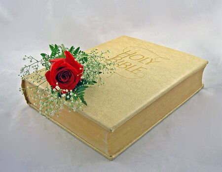 reborn: the holy bible with one red rose