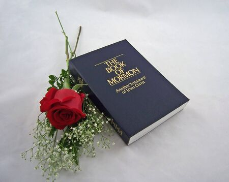 the book of mormon and one red rose photo