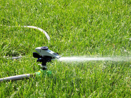 sun  soaked: sprinkler watering green lawn on summer day