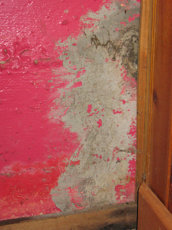 foundation cracks: mold and water damage from basement leak