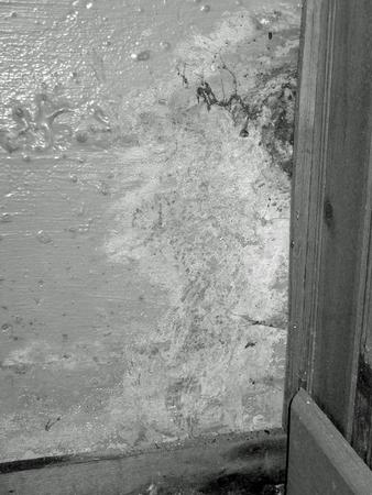 지하실 누출로 인한 곰팡이 및 물 손상 흑백 스톡 콘텐츠