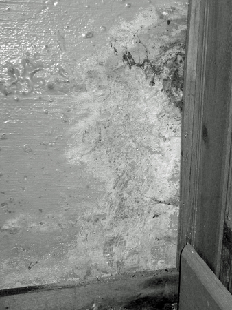 foundation cracks: mold and water damage from basement leak black & white Stock Photo