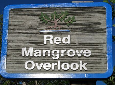 overlook: red mangrove overlook sign posted in park Stock Photo