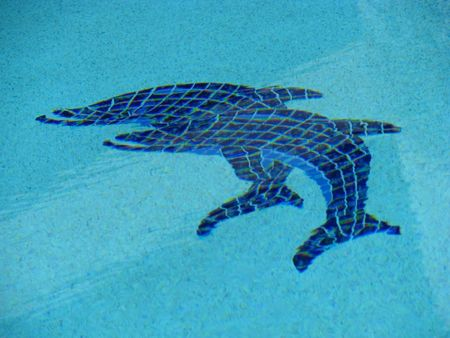 dolphin shaped tiles on swimming pool bottom Stock Photo