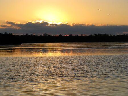 darling: sunset on Ding Darling Wildlife Refuge Florida