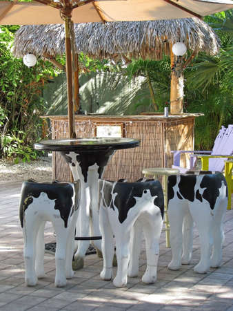 round chairs: cow pattern painted stools at outside bar