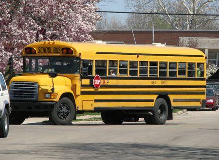도로에서 학교 버스 운전의보기