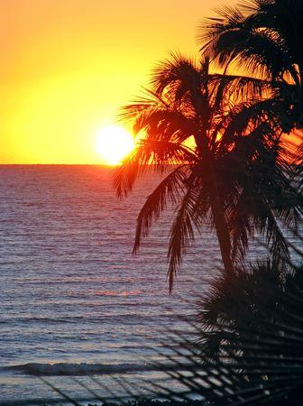산 니벨 플로리다에 아름다운 일몰