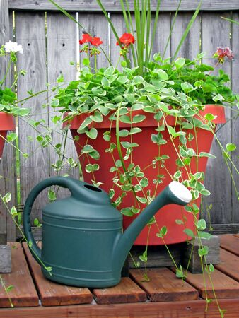watering can by  pots on wooden deck photo