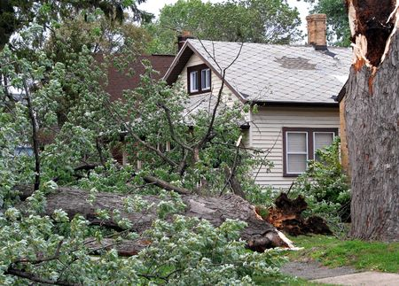 wind force: strong wind storm damage in midwest neighborhood