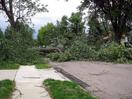 Fuerte tormenta de viento daños en el barrio Centro-Oeste Foto de archivo - 3596020
