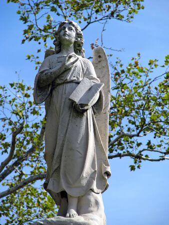 angel statue against blue sky and tree