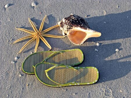 starfish, sandals, seashell,  on sand by ocean Stock Photo - 3842933