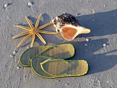 flip flops: starfish, sandals, seashell,  on sand by ocean