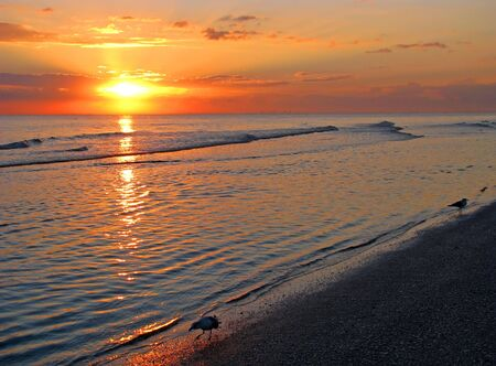 morn: a beautiful sunrise on Sanibel Island Florida