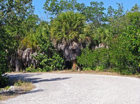 ding: Scenic Landscape Ding Darling Wildlife Refuge Florida Stock Photo