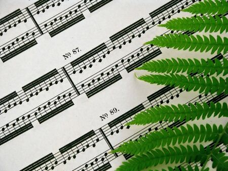 sheetmusic: closeup of a sheet of piano music