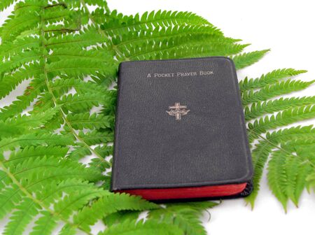 pocket prayer book over green fern fronds photo