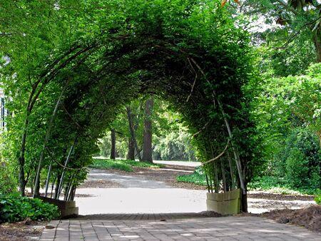 美しい植物園のアーチの風光明媚なビュー 写真素材
