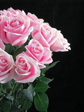 bouquet of pink roses on black background Stock Photo - 5022608