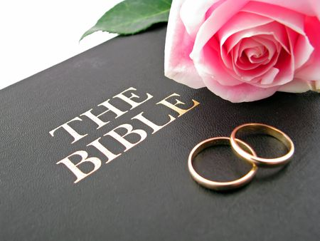 one pink rose and two wedding bands on the bible