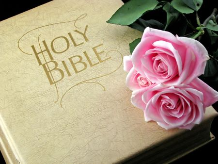 the holy bible and three pink roses Stock Photo