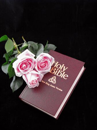 king james: holy bible king james version and three pink roses on black background
