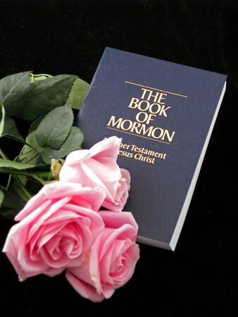 the book of mormon and three pink roses on black background photo