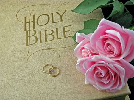 pink roses and wedding rings on the bible