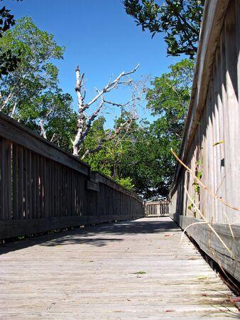 wooden boardwalk Ding Darling Wildlife Refuge Florida photo