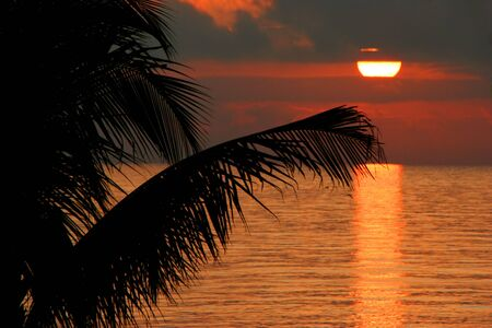 엽상체: a beautiful sunset on Sanibel Island Florida 스톡 사진
