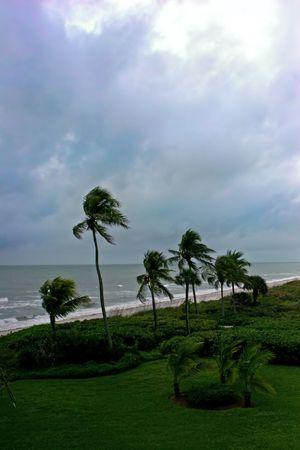 high winds: afternoon storm high winds  shoreline Sanibel Florida