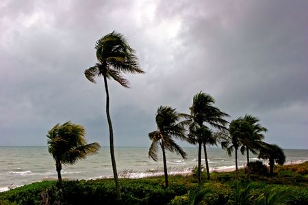 dismal: Afternoon Storm High Winds Shoreline Sanibel Florida