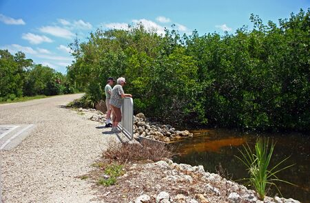 ding: Couple Sightseeing Ding Darling Wildlife Refuge Florida Stock Photo