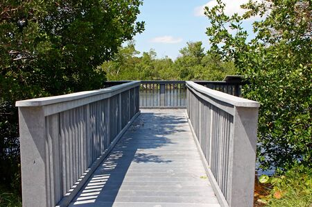 ding: Wooden Boardwalk Ding Darling Wildlife Refuge Florida