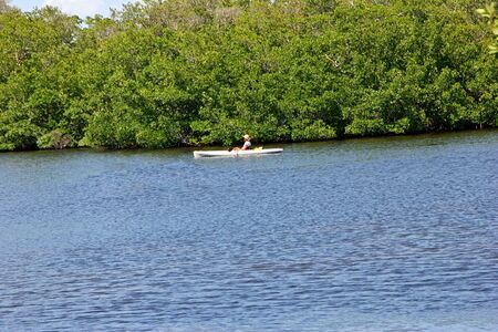 Woman In Kayak Darling Wildlife Refuge Sanibel Florida Imagens