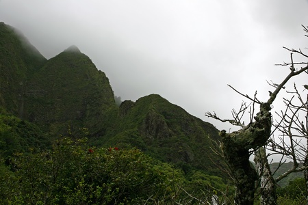 Needle Iao Valley State Park Wailuku Maui Hawaii photo