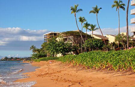 Beautiful Tropical Beach Shoreline Maui Island Hawaii