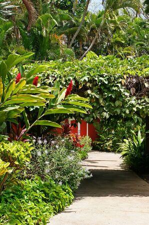 ornamental horticulture: Botanical Garden Maui Tropical Plantation Wailuku Hawaii