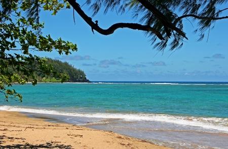 kauai: Beautiful Tropical Beach Shoreline Kauai Island Hawaii