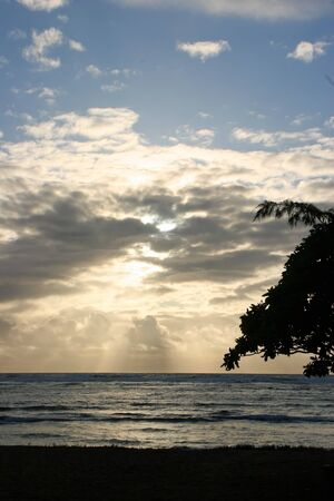 shoreline: Beautiful Ocean Sunrise on Kauai Island Hawaii
