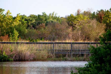 bridge over water: Foot Bridge Over Water Ding Darling Wildlife Refuge Sanibel Florida