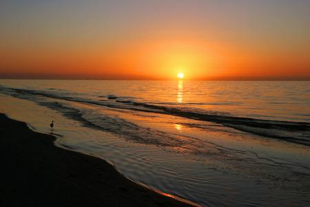 amanecer: Un hermoso amanecer en Sanibel Island Florida