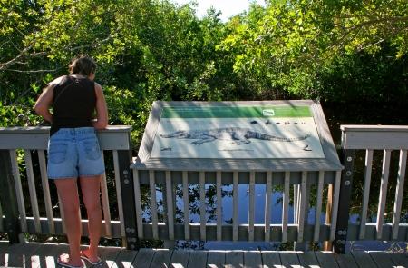sanctuary: Caucasian Woman by Alligator Sign Wildlife Sanctuary Florida