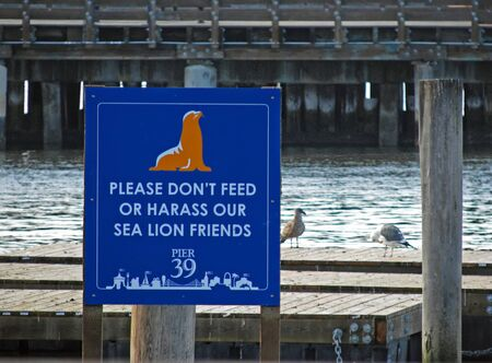 Sea Lions Pier 39 San Francisco California Notice Sign