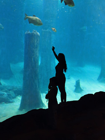 natural looking: Silhouette Of Woman and Child at Aquarium Exhibit Stock Photo