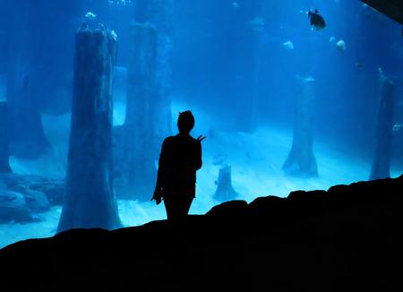 freshwater: Silhouette Of Woman at Freshwater Aquarium Exhibit
