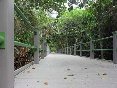 Bailey Homestead Preserve Trail Memorial Boardwalk Sanibel Florida