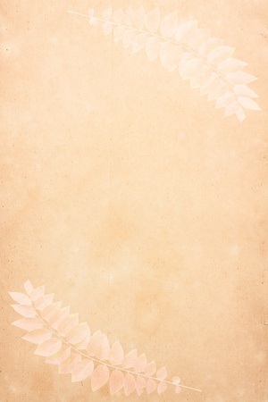 Old  vintage paper with leaf texture Stock Photo